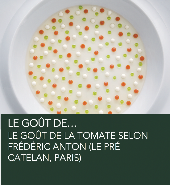 gout-tomate-wid